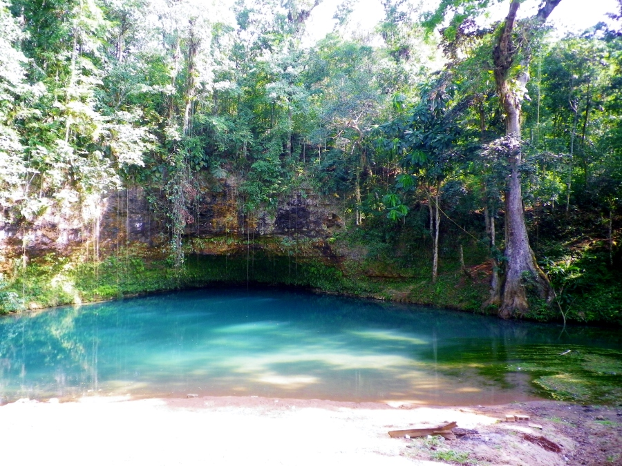 A beautiful cave river in central Jamaica, very special spot.
