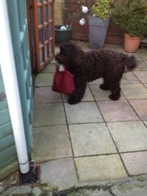Carrying my Mum's handbag.