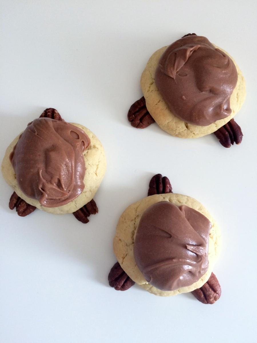 Turtle Cookies, Sam Loves Cake